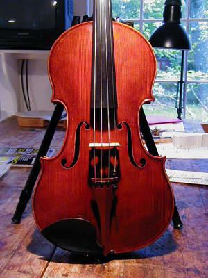 16 5/8 in. Viola 2004