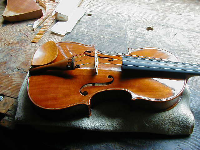 16in Viola, 2001
