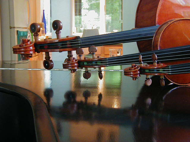 Trio 2005