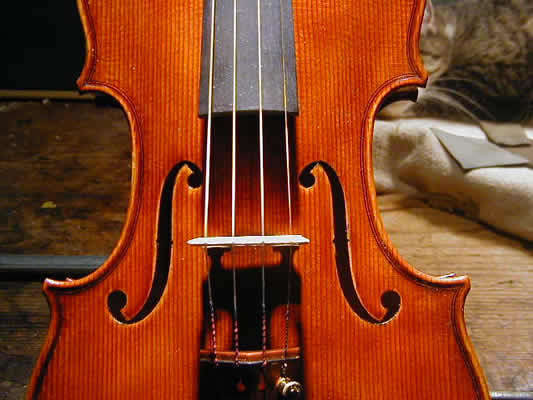 Violin 2000