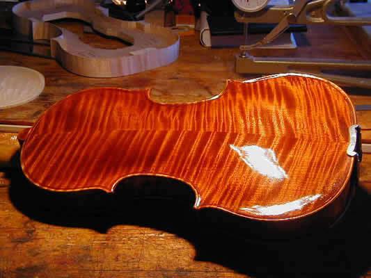 Violin 2004